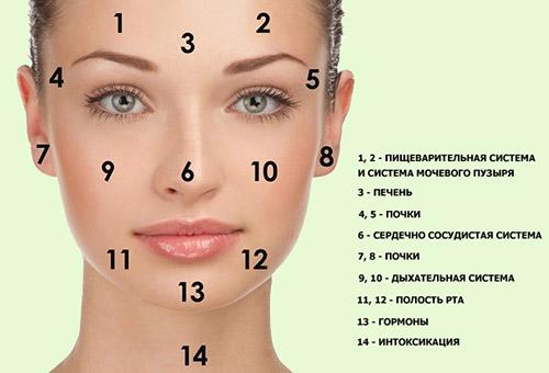Как сузить поры на лице отзывы косметологов