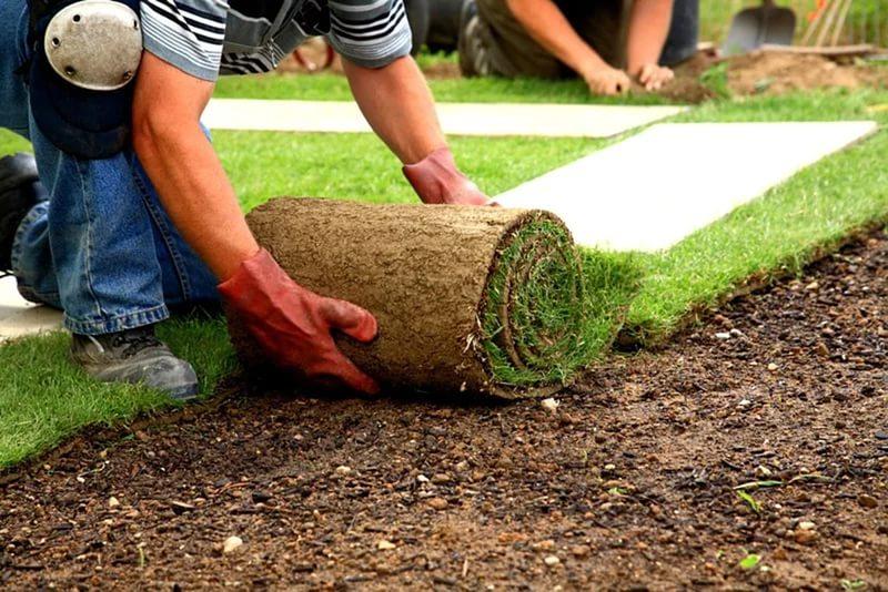 Орошение газонов своими руками