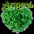 Апрель зеленое сердечко