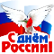 День России голубь