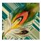 Перо жар-птицы
